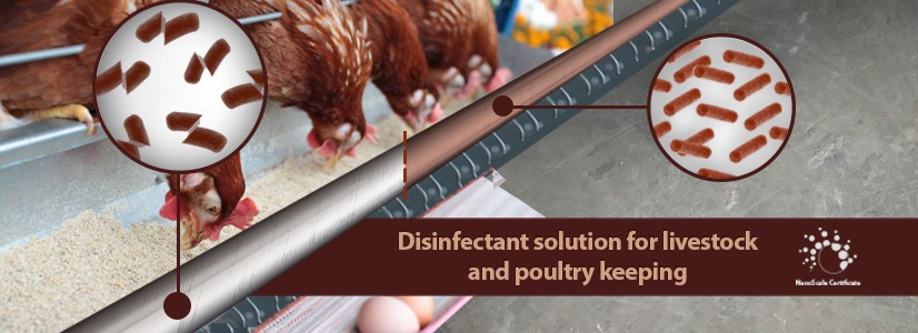 Nanotechnology Increases the Profitability of Poultry Farming