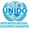 The United Nations Industrial Development Organization (UNIDO)
